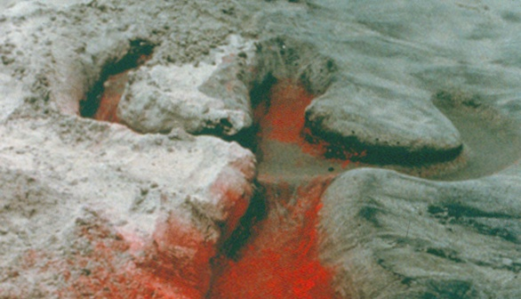 London Art Studies Ana Mendieta Untitled Silueta Series